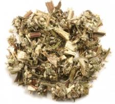 Organic Mugwort - Artemisia vulgaris L. 1/2 cup
