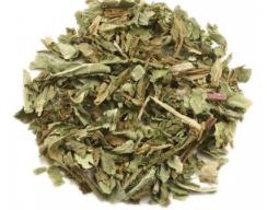 Organic Dandelion Leaf - Taraxacum officinale 1/2 cup