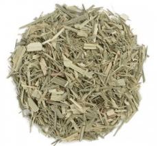 Organic Lemongrass - Cymbopogon citratus 1 cup