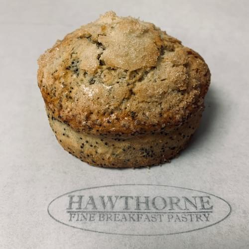 Lemon Poppyseed Scone
