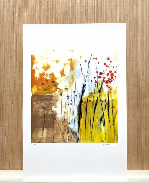 Limited Edition Print  017