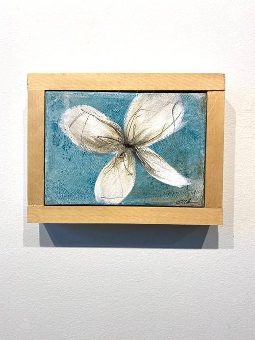 Flower Box 5
