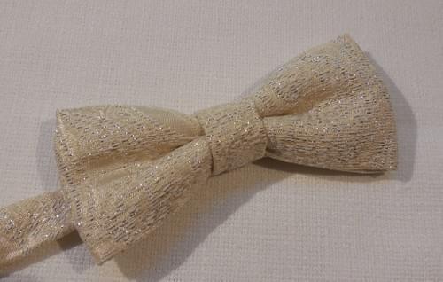 Papillon e Pochette - Bow tie and Pocket square
