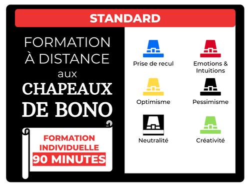FORMATION INDIVIDUELLE STANDARD personnalisée + à distance - 90 minutes - Créneau de votre choix