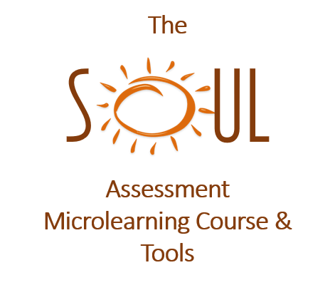 The SOUL Assessment (TSA)