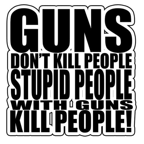 Guns Don't Kill, Stupid People Kill Decal
