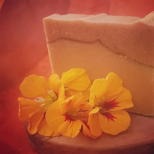 savon: le P'tit Pain Fraîcheur / Citron - Gingembre