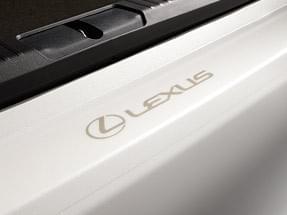 Lexus Rear Bumper Applique