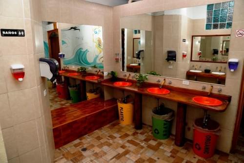 The Green Room / La Habitación Verde