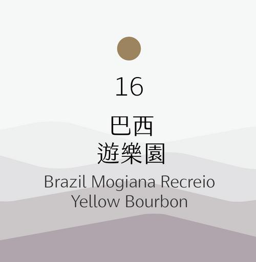 [中烘焙] No.16 巴西 遊樂園 去果皮日曬 Brazil Mogiana Recreio Yellow Bourbon Pulped Natural