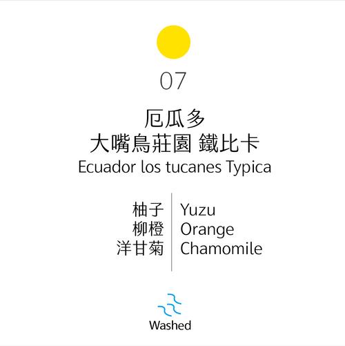 淺烘焙|No.07 厄瓜多 大嘴鳥莊園 鐵比卡 水洗|Los Tucanes, Ecuador, Typica, Washed Process