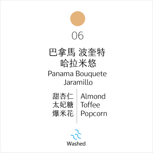 淺烘焙|No.06 巴拿馬 波奎特 哈拉米悠 水洗|Jaramillo, Bouquete, Panama, Washed Process