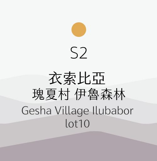 [淺烘焙] S2 衣索比亞 瑰夏村 伊魯森林 日曬 Ethiopia Gesha Village Ilubabor lot10 Natural