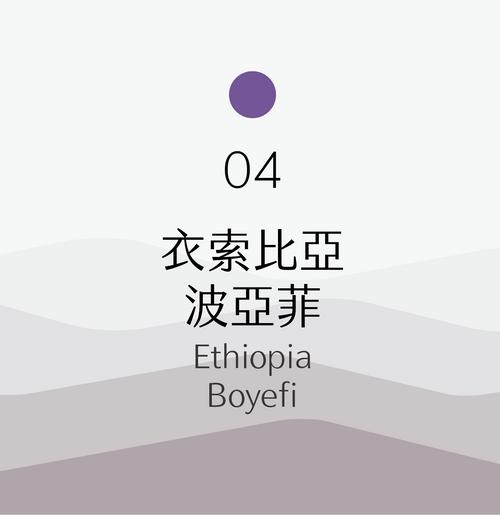 [淺烘焙] No.04 衣索比亞 波亞菲 日曬 Ethiopia Boyefi Natural