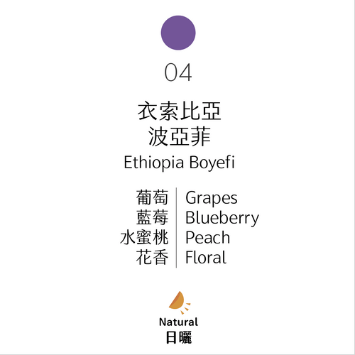 淺烘焙|No.04 衣索比亞 波亞菲 日曬|Boyefi, Ethiopia, Natural Process