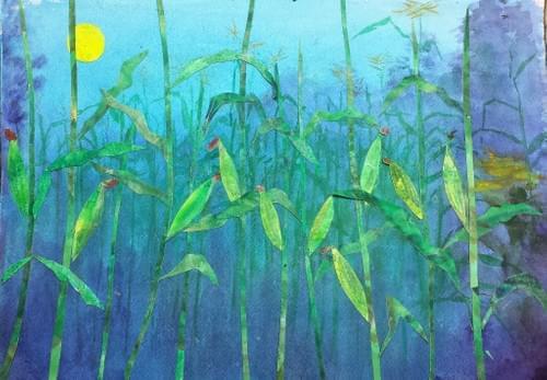 Golden Bantam Improved Sweet Corn
