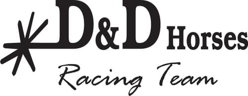 Summerchallenge D&D Horses