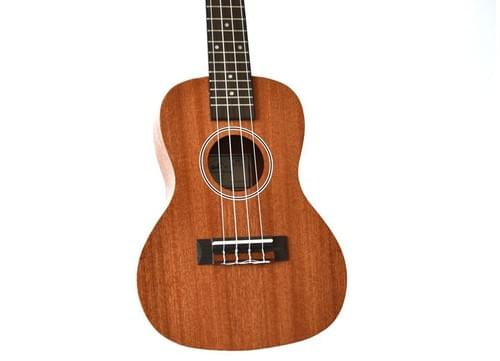Pioneer Tenor Ukulele with Padded Gig Bag