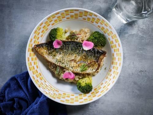 味噌靖魚燉飯