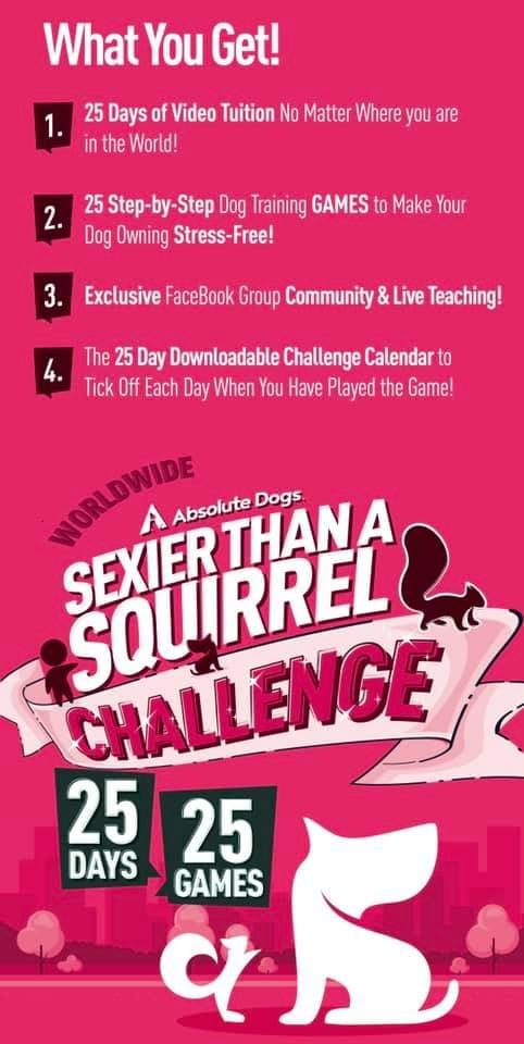 Online 25 Day Sexier than a Squirrel Challenge + Private 30 min Zoom