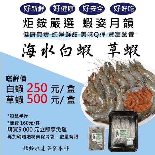 炬銨嚴選 白蝦 草蝦