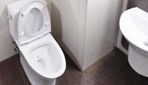 Cible Toilettes - Mouche WC - L'audacieuse - 6 stickers