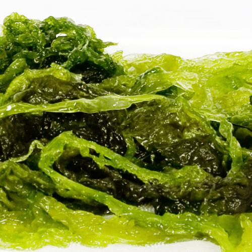 Aonori verde fresca