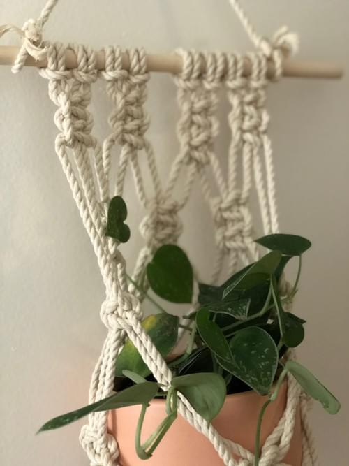 Macramé Plant Hanger - Online Oct. 3