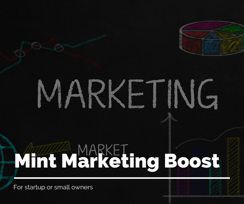 Mint Marketing Boost