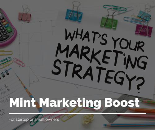 Mint Marketing Boost - 30% Discount Offer