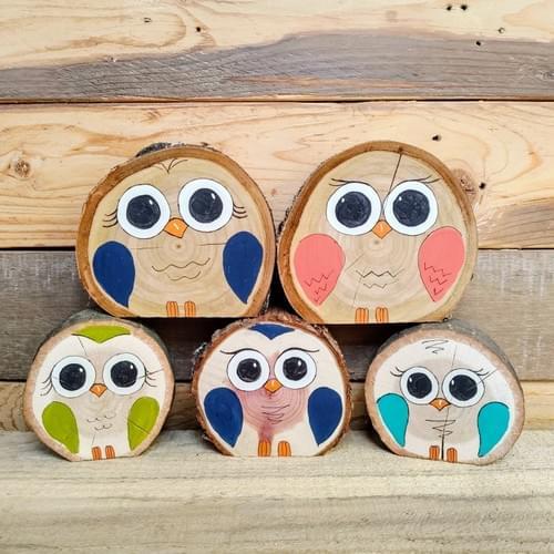 Log Slice Owls