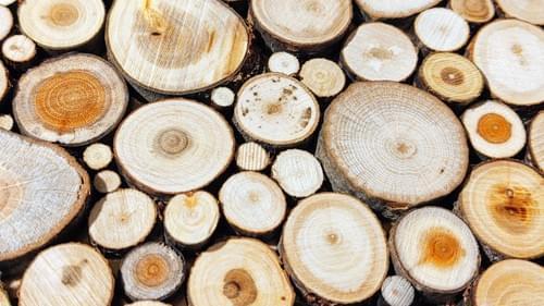 7/1/21 DIY Wood Slice Workshop $59 Rome, WI