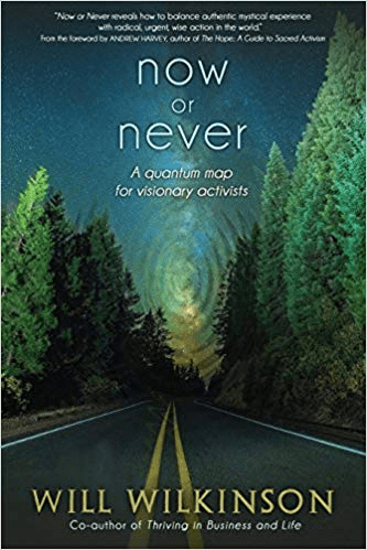Now or Never book