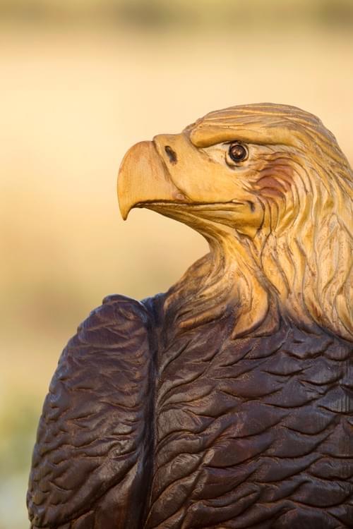 Natural Color Bald Eagle -4 ft Tall