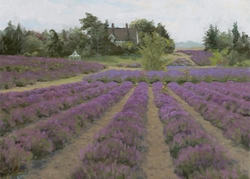 """Lavender Afternoon"" Cards"