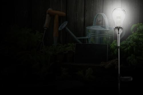 Giant Glass Bulb Solar Light
