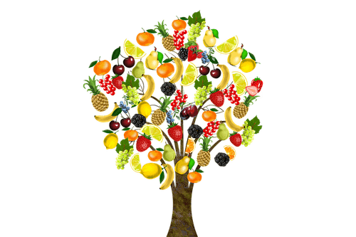 Any Fruit Tree or Fruit to Feed