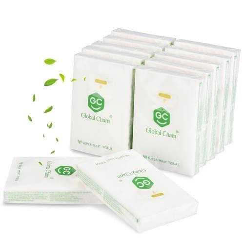 Super Mint Aromatherapy
