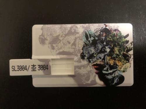 SL3004/杢3004 ピコカード(Ver.1)