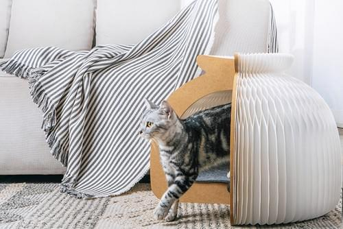 Cat house_Small