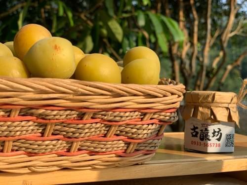 季節限定(4-5月)青梅鮮果 - YUYU古釀坊(閎園企業社)