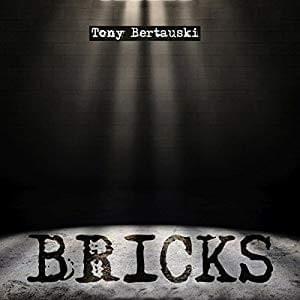 DD - Bricks by Tony Bertauski