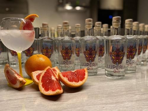 Luperia Gin (Bouteille)