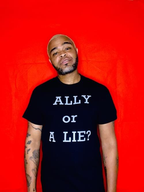 """ALLY or A Lie?"" T-Shirt"