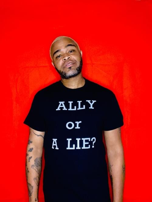 ALLY or A LIE? T-Shirt