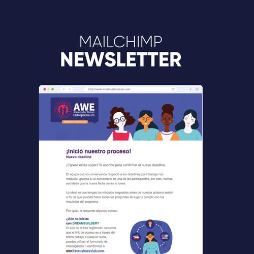 Sales Page (Mailchimp)