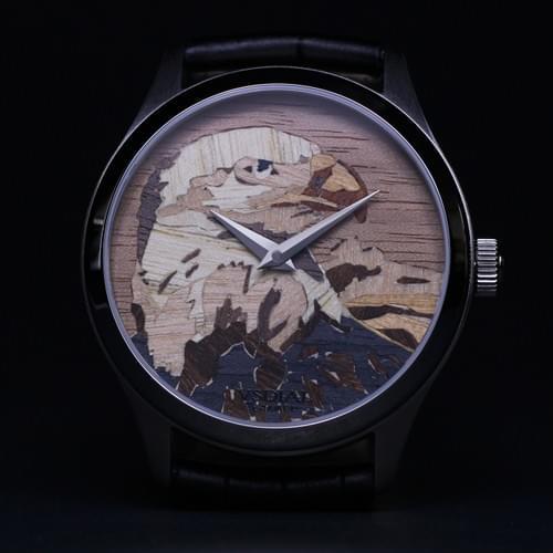 Artmaster / Bald Eagle