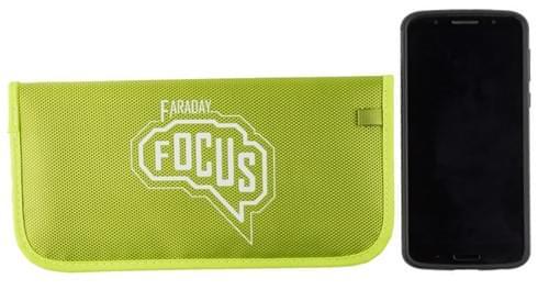 Faraday Focus