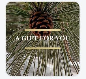 Square Gift Certificate - Pine