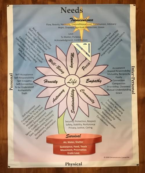 "Needs or Feelings Banner (60"" x 48"")"